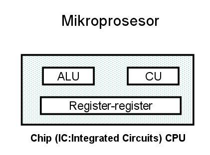 central processing unit essay
